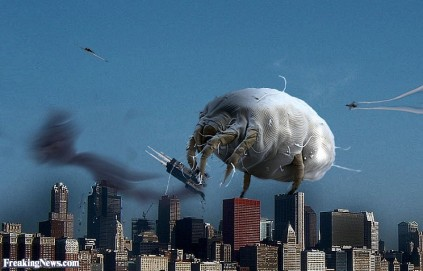 Bed-Bug-Attacks-a-City--48734