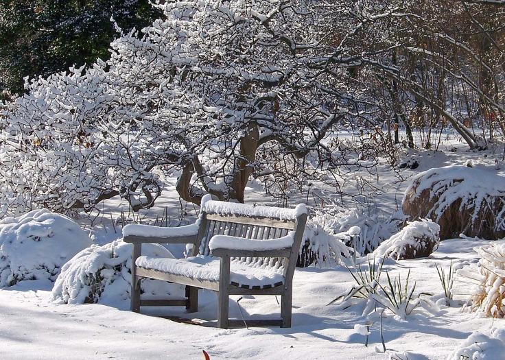 winter-bench-mid.jpg