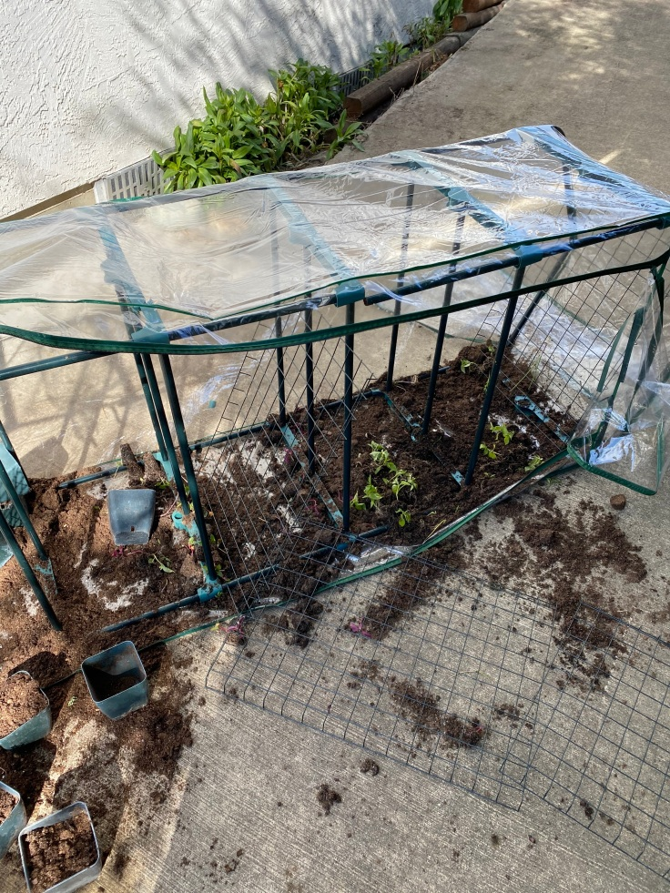 Greenhouse fail